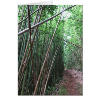 Bamboo Forest Card