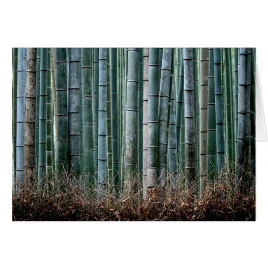 Bamboo Forest, Japan Card