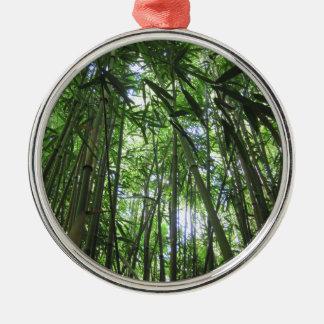 Bamboo Forest Maui Hawaii Tropical Jungle Trees Christmas Ornament