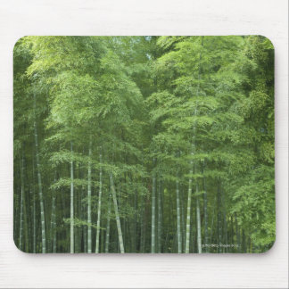 Bamboo Forest Mouse Mat
