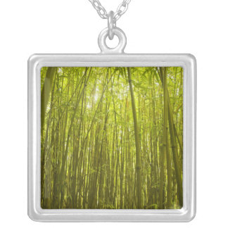 Bamboo Forest near Waikamoi Ridge Trail, North Silver Plated Necklace