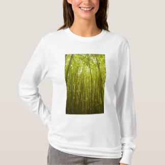 Bamboo Forest near Waikamoi Ridge Trail, North T-Shirt