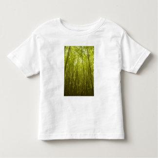 Bamboo Forest near Waikamoi Ridge Trail, North T Shirts
