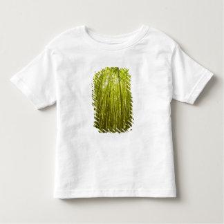 Bamboo Forest near Waikamoi Ridge Trail, North Toddler T-Shirt