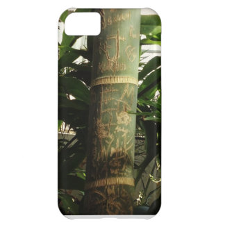 Bamboo Graffiti phone iPhone 5C Case