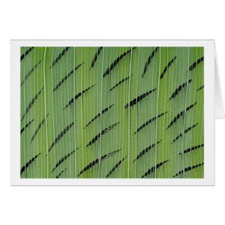 Bamboo Greens Card