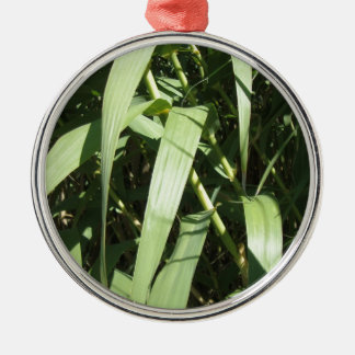Bamboo Leaves Silver-Colored Round Decoration