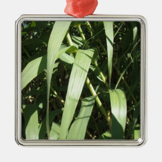 Bamboo Leaves Silver-Colored Square Decoration