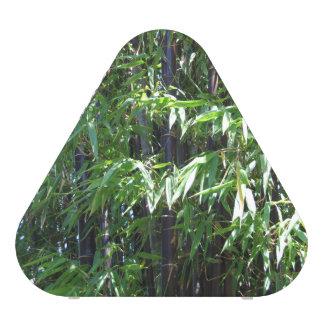 Bamboo Pieladium Speaker