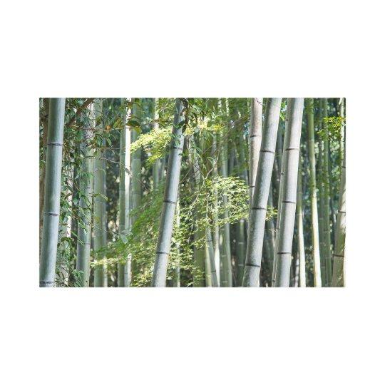 Bamboo Shoots Canvas Print