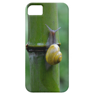 Bamboo snail Bamboo Slug macro Case For The iPhone 5