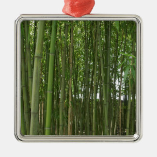 Bamboo trees Silver-Colored square decoration