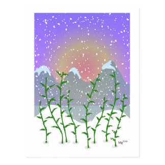 Bamboo Winter Postcard
