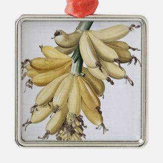 Banana, 1816 christmas ornament