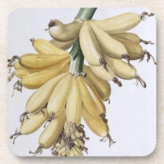 Banana, 1816 coaster