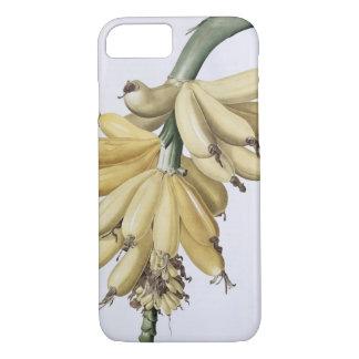 Banana, 1816 iPhone 8/7 case