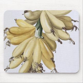 Banana, 1816 mouse mat