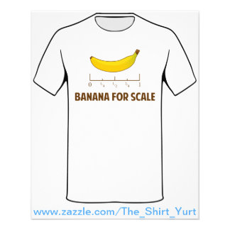 Banana For Scale 11.5 Cm X 14 Cm Flyer
