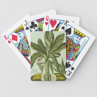 Banana, from J. Weinmann's Phytanthoza Iconographi Bicycle Playing Cards