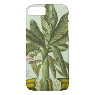 Banana, from J. Weinmann's Phytanthoza Iconographi iPhone 8/7 Case