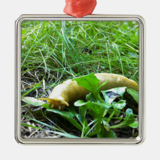 Banana Slug Christmas Ornament