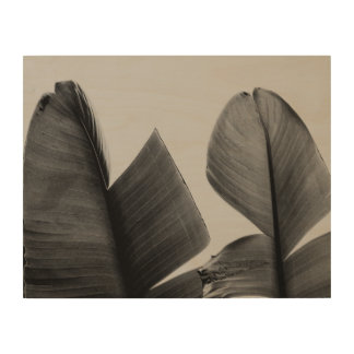 Banana Tree Leaves in Sepia Wood Print
