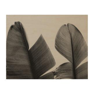Banana Tree Leaves in Sepia Wood Prints