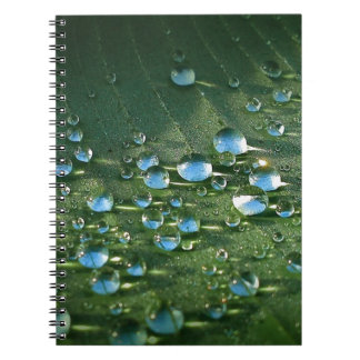 Banana Tree Notebook