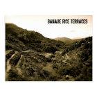Banaue Rice Terraces (sepia) Postcard