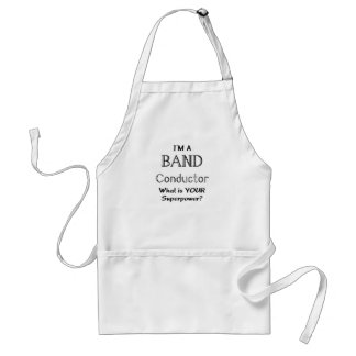 Band conductor standard apron