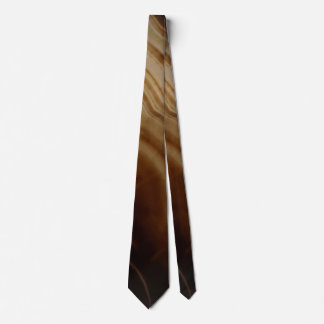 Banded Agate, Brown, Cool Nature Stone Tie