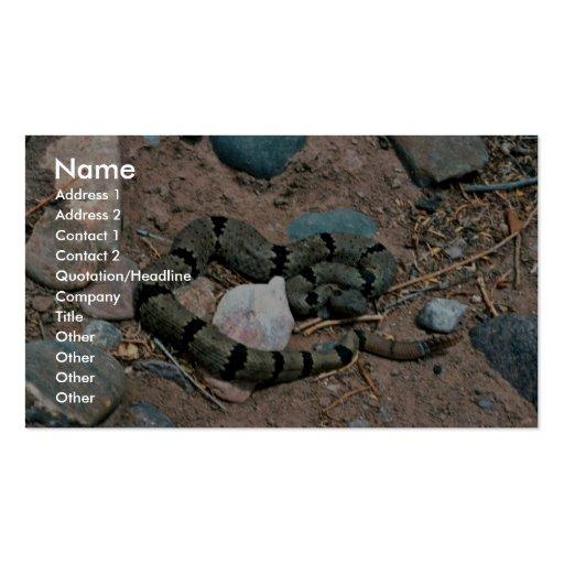 Banded Rock Rattlesnake Business Cards