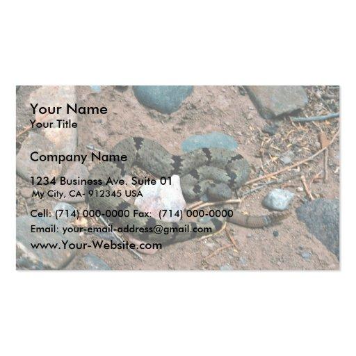 Banded Rock Rattlesnake Business Card Templates