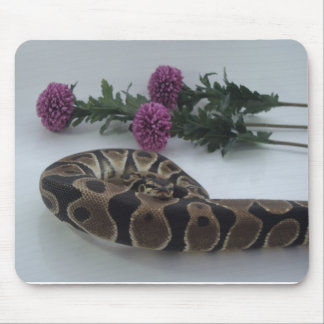 Banded Royal Python with Pink flower Mouse Mat