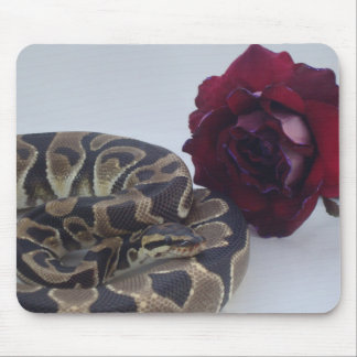 Banded Royal Python with Red Rose Mouse Mat