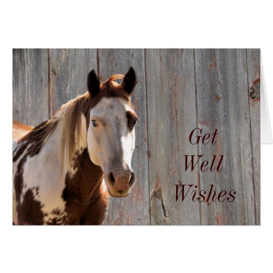 Bandit Get Well Card.. customise it yourself Card