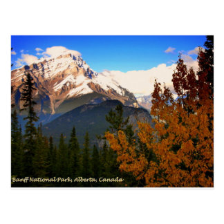 Banff National Park, Alberta, Canada Rockies Postcard