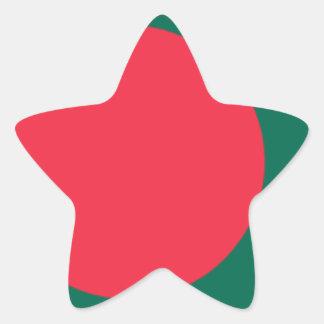 Bangladesh Flag Star Stickers