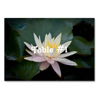 Bangladesh Water Lily Table Cards