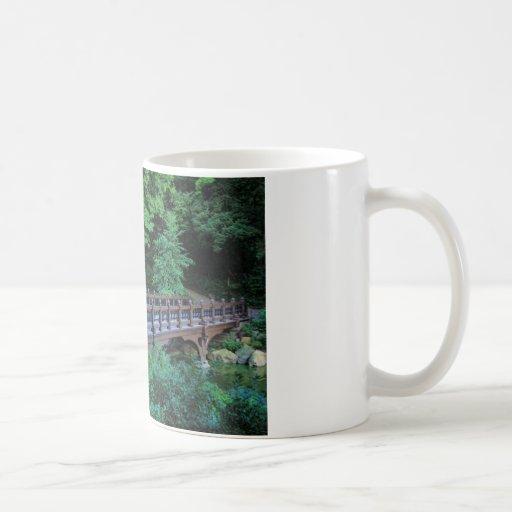Bank Rock Bridge, Central Park, New York City Mug