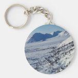 Banks of the Coleen River Keychains