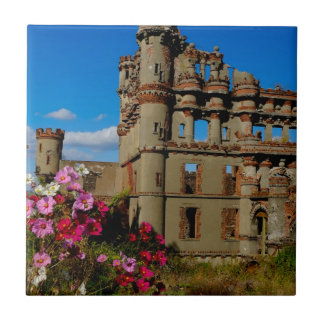 Bannerman's Castle on Bannerman Island Tile