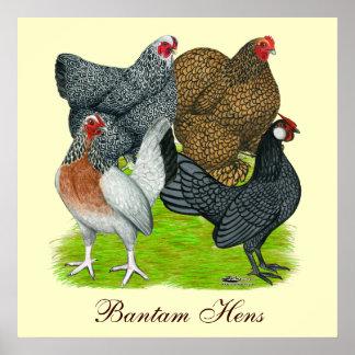 Bantam Hen Quartet, Bantam Hens Poster