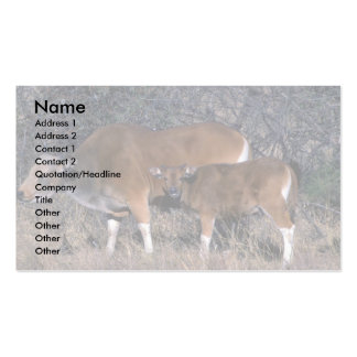 Banteng-adult bull with calf business card templates