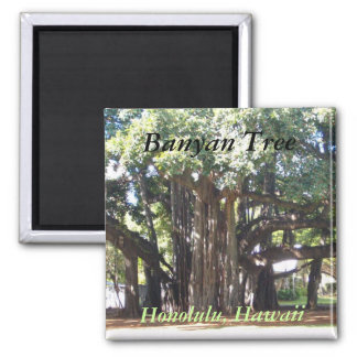 Banyan Tree Square Magnet