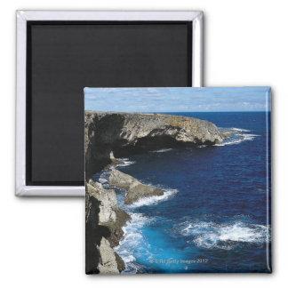 Banzai Cliff Magnet