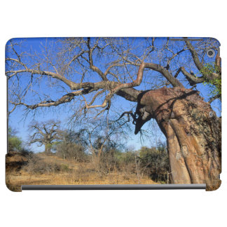 Baobab (Adansonia Digitata), Kruger National