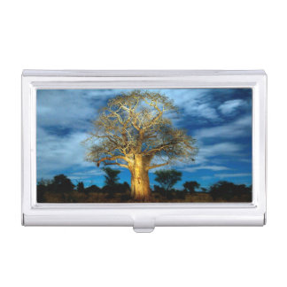 Baobab (Adansonia) Tree Light Up By The Moon Business Card Holder