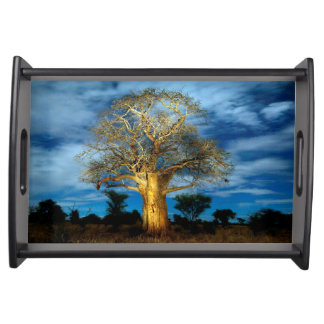 Baobab (Adansonia) Tree Light Up By The Moon Serving Tray