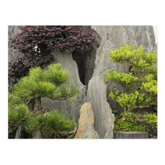 Bao's family garden, Huangshan, China. 2 Postcard
